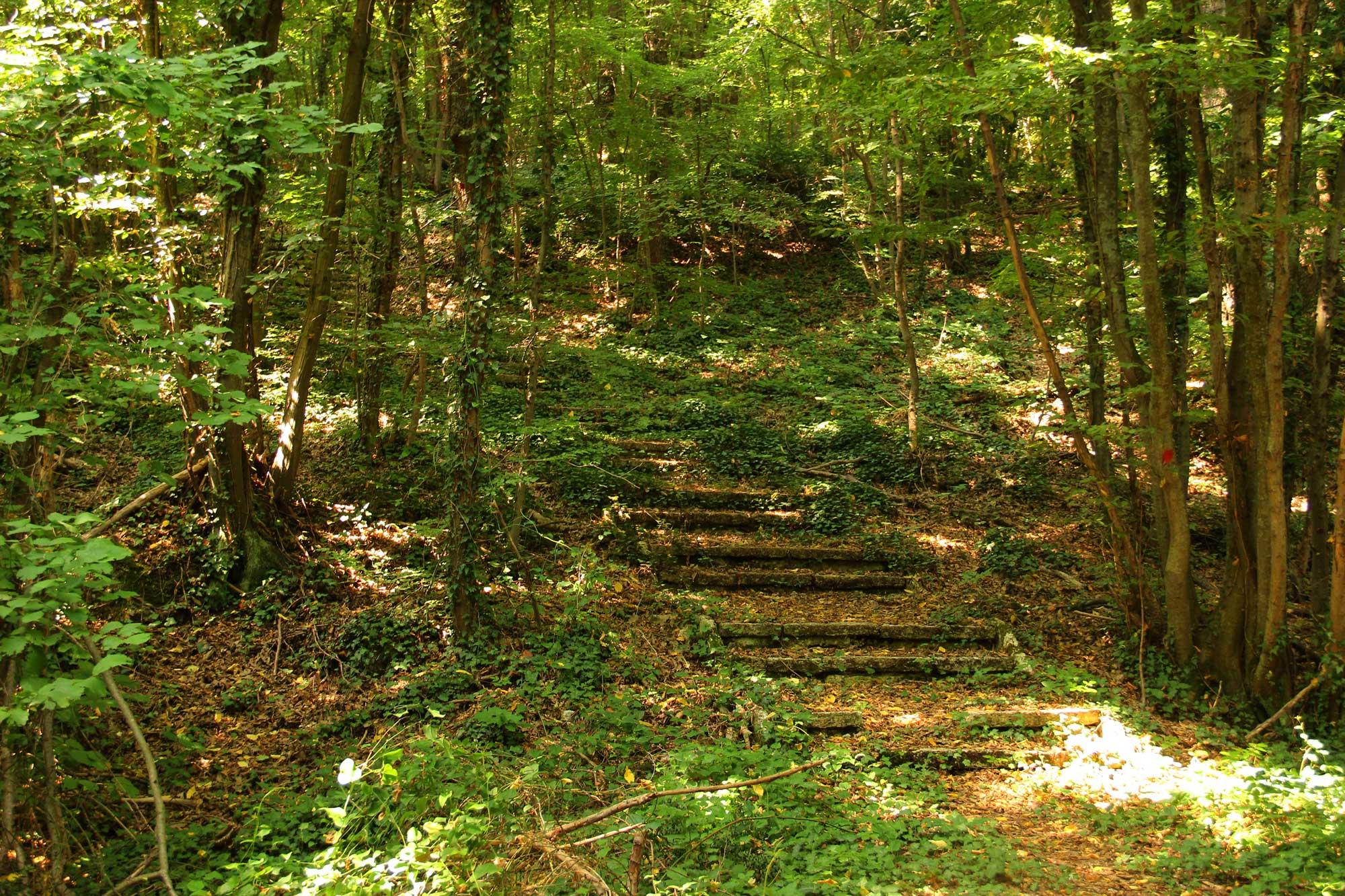 дорога к монастырю в гору
