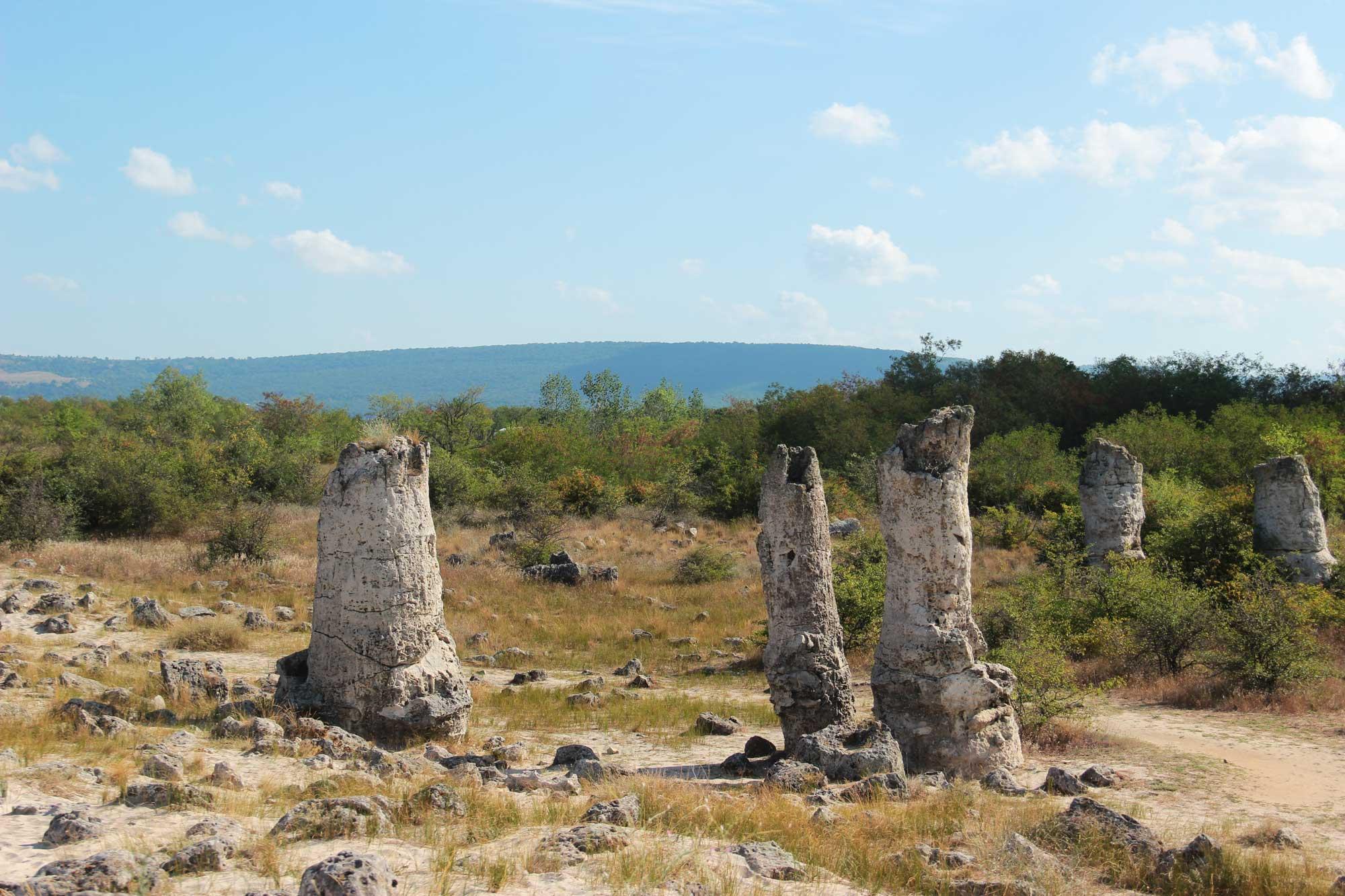 камни среди обычного природного пейзажа