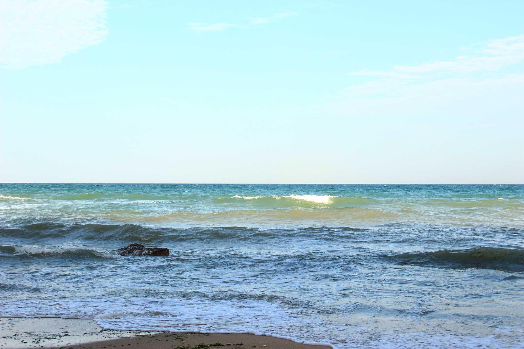 много цветов моря