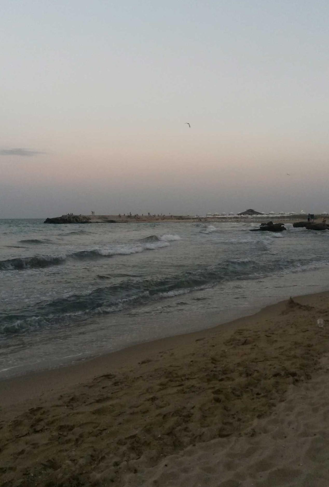 вечернее ласковое море зп