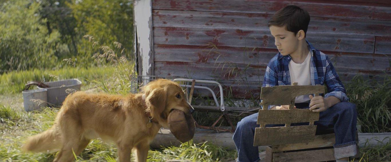 актёр брайс гезар в роли мальчика хозяина собаки