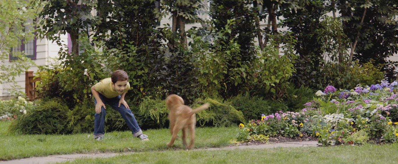 мальчик счастливо играет с верным другом