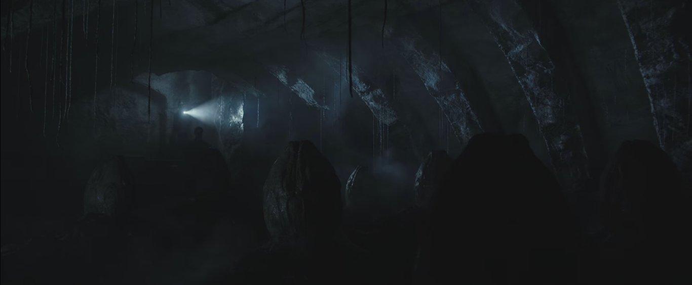 первый взгляд на инопланетные яйца